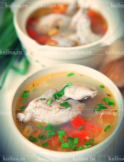 Суп из перепелки рецепты