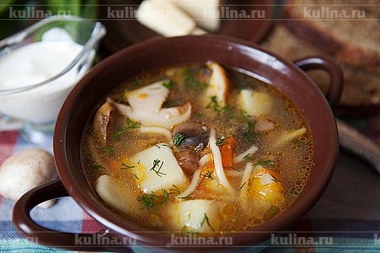 Суп из белых замороженных грибов в мультиварке