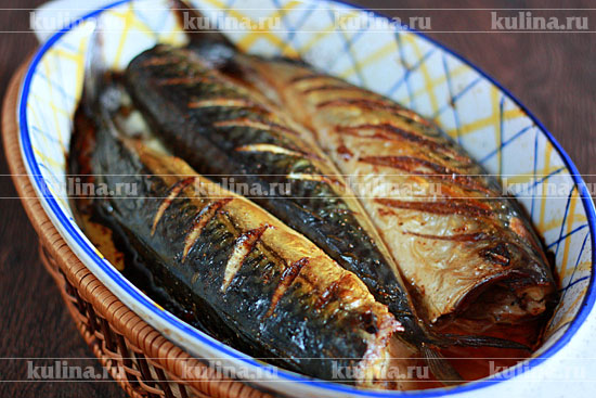 приготовление рыбы в духовке рецепты скумбрия