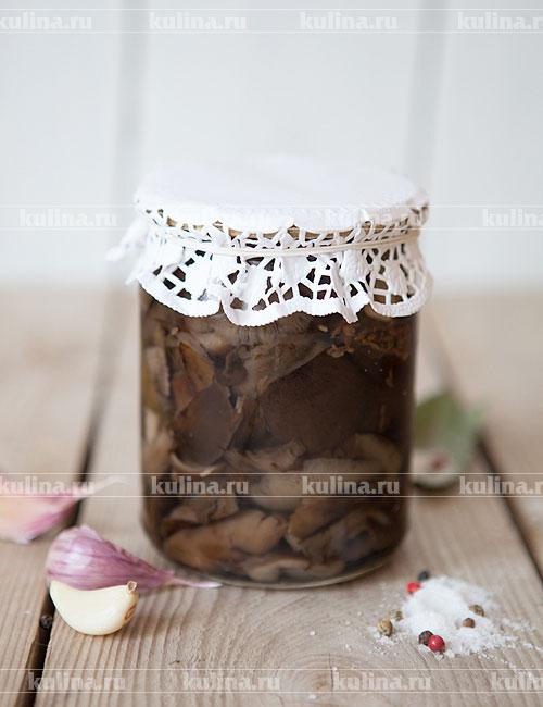 Опята соленые – рецепт приготовления с фото от Kulina.Ru