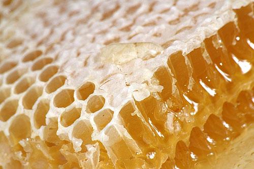 мед в сотах картинки