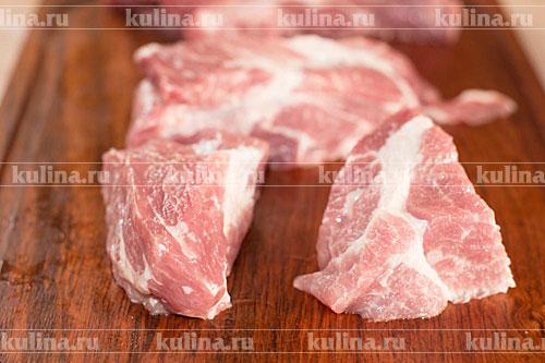 Шашлык из свинины рецепт по кавказски