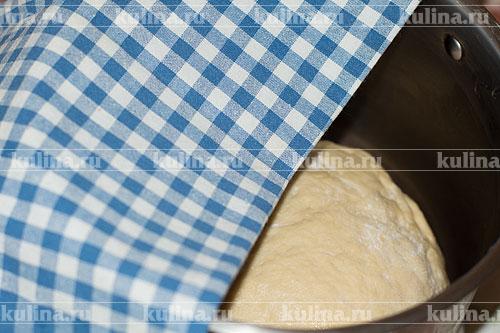 Замесить тесто руками, скатать в шар. Положить тесто в теплую посуду, смазать растительным маслом, накрыть полотенцем и крышкой и оставить подходить.
