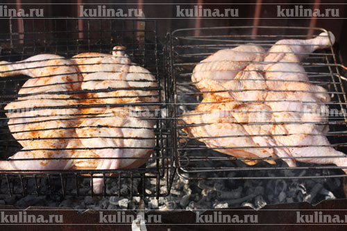 Шашлык из курицы по-турецки – кулинарный рецепт