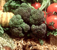 5 рецептов с брокколи